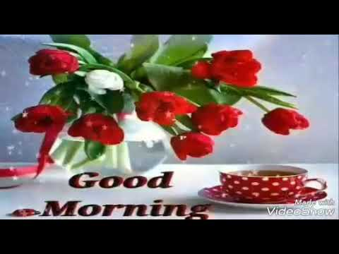 Good Morning Video Whatsapp In Odia Youtube