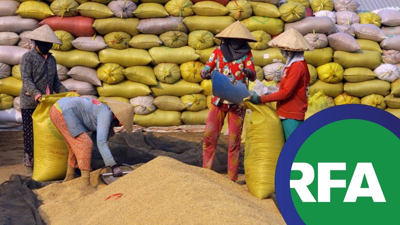 Sở hữu toàn dân về đất đai là trở ngại cho nông nghiệp Việt Nam