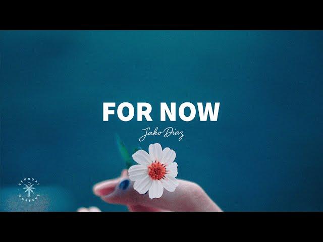Jako Diaz - For Now (Lyrics) ft. Margret