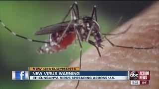 DOH issues warning in Chikungunya virus