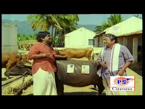 என்னடா எருமை மாட்டுக்கு செவப்பு பெயிண்ட் அடிக்கற மாட்ட செவப்பு ஆகறாயா ||V K ராமசாமி காமெடி