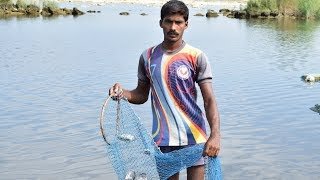 How To Catch and Clean Fresh River Fish | Amazing Skill Fast River Fish Cleaning  | Wild Food
