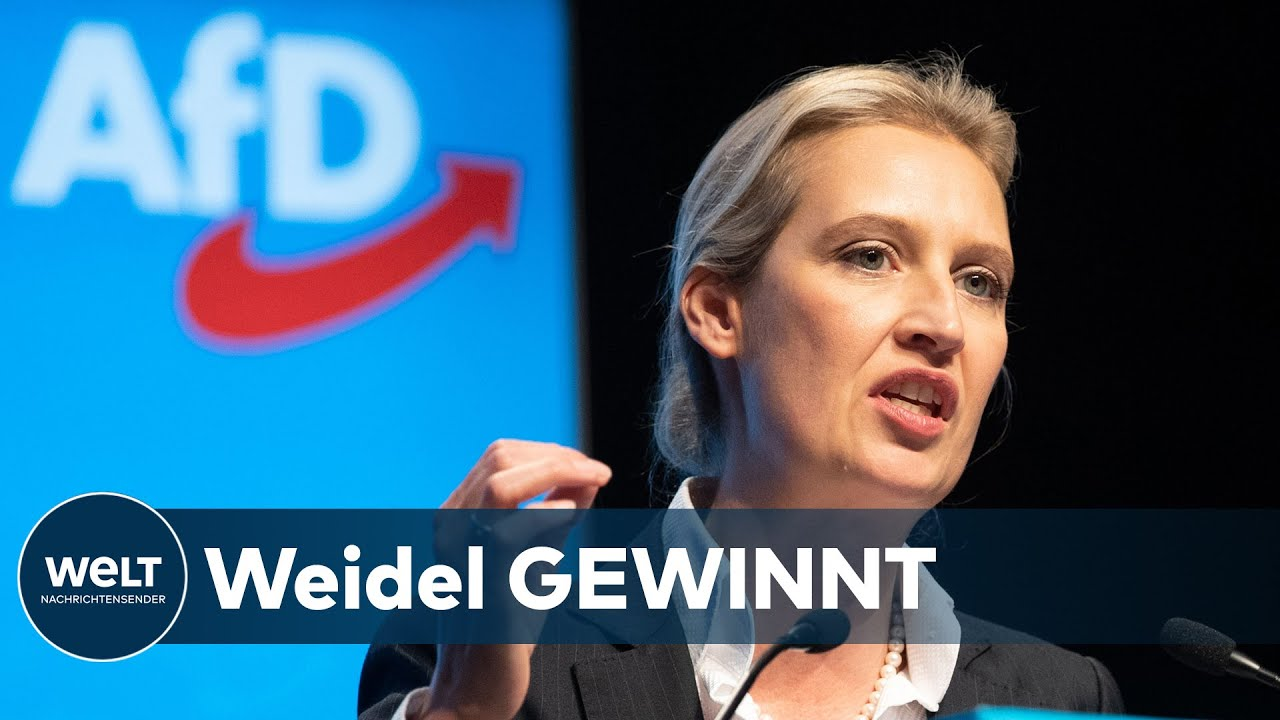 Alice Weidel Afd Youtube