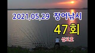 장어낚시47회-삽교호,장어인밴드,말지렁이,RC보트,버림채비,천평채비,쉬리채비