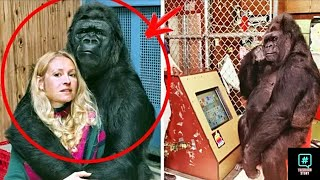 This woman took a selfie with the gorilla but when she saw the photo she was shocked