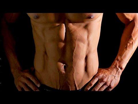 Pierde grasa y gana definición de forma CORRECTA, aprendiendo el proceso INTERNO (CAP1)