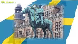 Grattis Sverige på nationaldagen