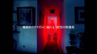 『闇のあとの光』予告編