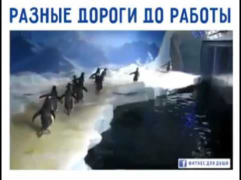 Клип Разные - Домой