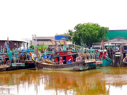 Kuala Selangor - Sekinchan Tour