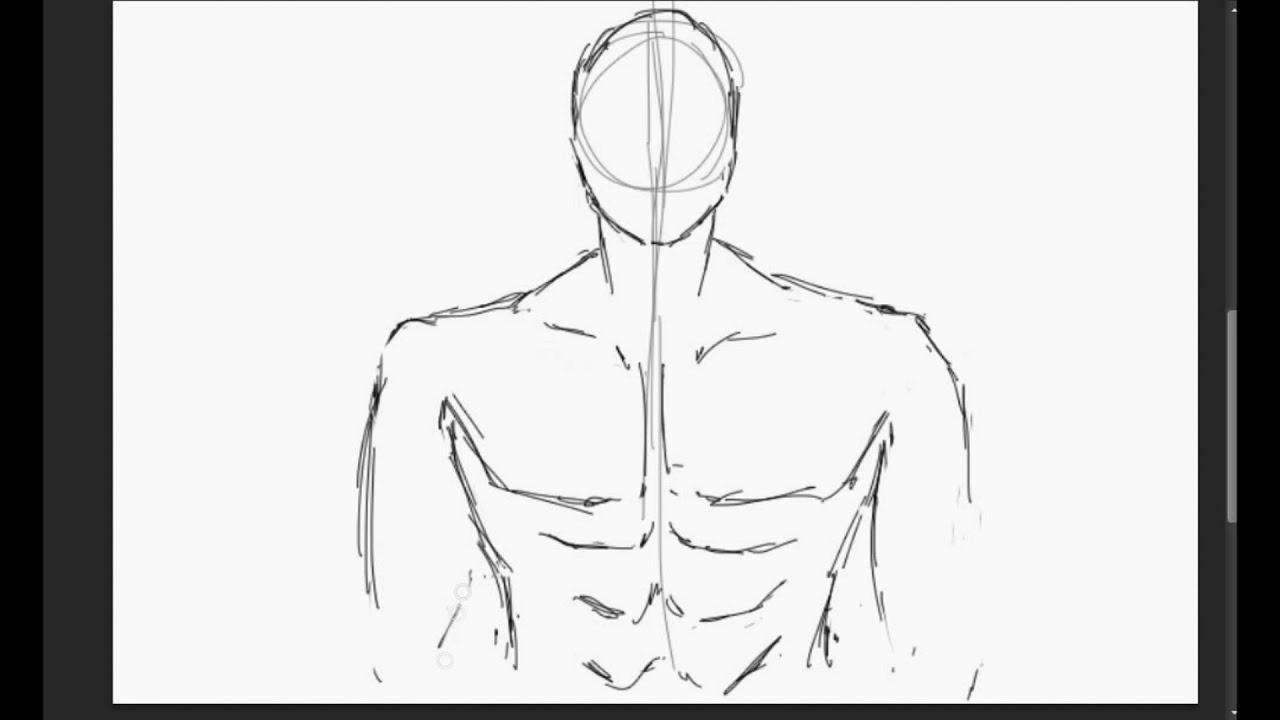 Desenho Manga Corpo De Um Homem Tronco De Um Homem Youtube