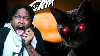 MOVIE NIGHT #22 | WARNING CAT LOVERS |  Crypt TV REACTION