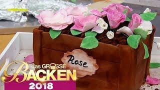 Blumentopf 3D Torte | Aufgabe | Das große Backen 2018 | SAT.1 TV