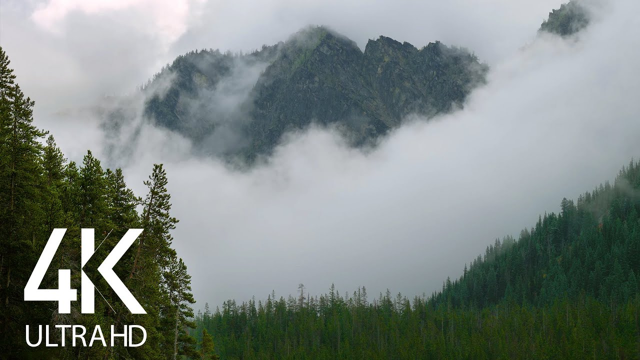 Fascinating Mountains in Fog - 8HRS of Soothing Sound of Wind and Bird's Chirping