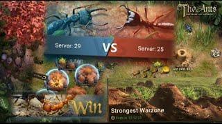Strongest warzone event, The Ants: Underground Kingdom - Server #29 Vs #25 💥🔥😱 screenshot 3