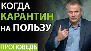 Когда карантин на пользу. Александр Шевченко 2020