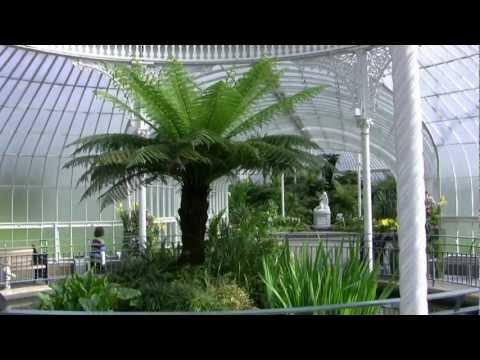 Glasgow Botanic Gardens (I)