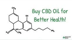 Buy CBD Oil in Canada For Better Health!