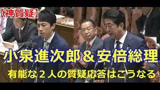 【神質疑】小泉進次郎&安倍晋三 有能な2人の質疑応答はこうなる