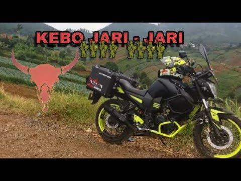 Motor Yamaha Byson Modif Jari Jari