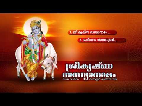 SREE KRISHNA SANDHYANAMAM | Hindu Devotional Songs Malayalam | Sree Krishna Audio jukebox