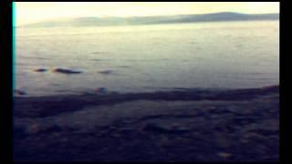 Sigur Rós - Sæglópur (steve sampling remix)
