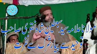 Best Spech By Allama Syed Sabtain Shah Naqvi Sb Topic Toheed Sy Payar Shirk Sy Nafrat EasyWay Jhang