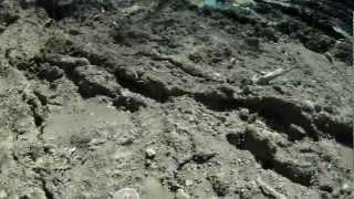 На мото по газопроводу: Владивосток -- Находка (8-9.10.11).mp4