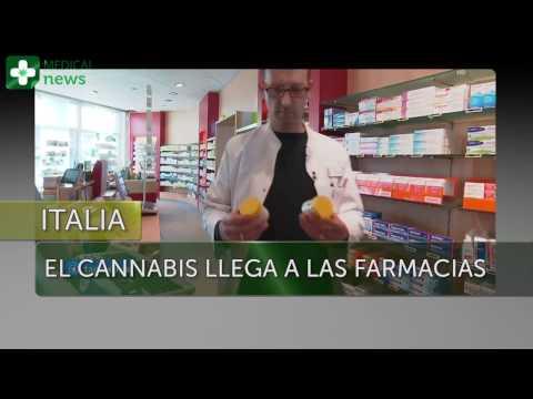El cannabis llega a las farmacias de Italia - MEDICAL NEWS