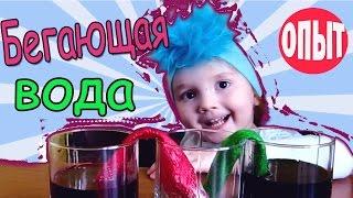 Опыты для детей БЕГАЮЩАЯ ВОДА Эксперименты дома  Детские опыты с водой  в домашних условиях