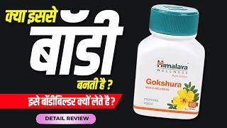 Himalaya gokshura tablets : Natural testo booster | Doctors review in hindi by Dr.Mayur