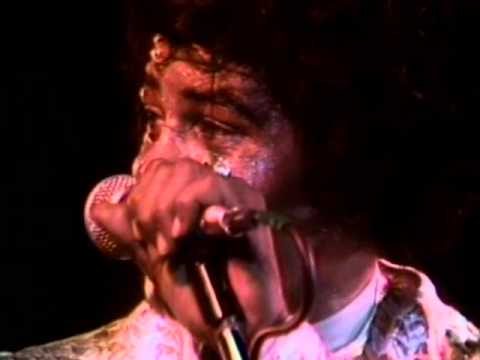 Download James Brown - Papa's Got A Brand New Bag (Santa Cruz, California 1979)