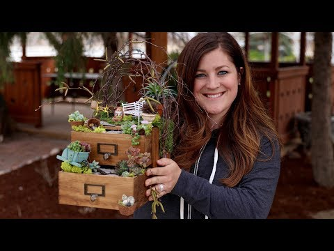 Mini Drawer Garden! 🌿😍 Garden Answer