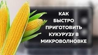 Как приготовить кукурузу в микроволновой печи