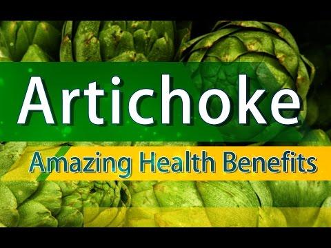 Artichoke Benefits Amazing Benefits of Artichoke Health Benefits of Artichoke