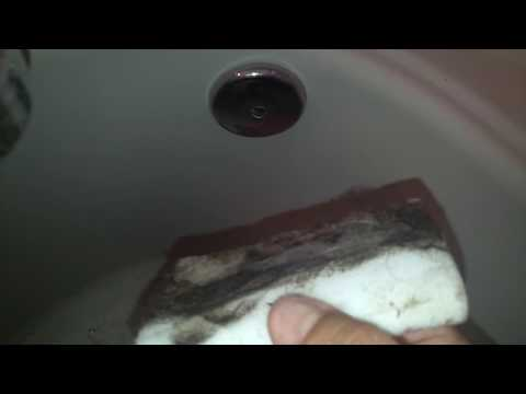 Magic Eraser to cash dust and pet hair in Bathroom.Pet-Friendly Cleaning Services in Central Florida