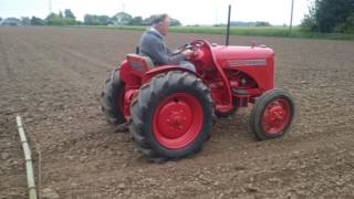 "Gambar cover David Brown Vak1 driven by ""Lord Goldup"" harrowing his brassica crop."
