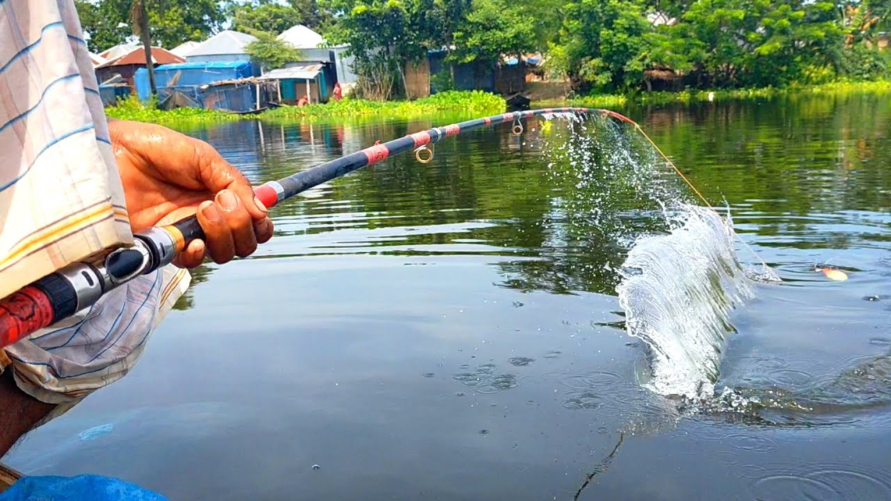 Hook Fishing - Traditional Hook Fishing - MR Fishing Life (Part-341)