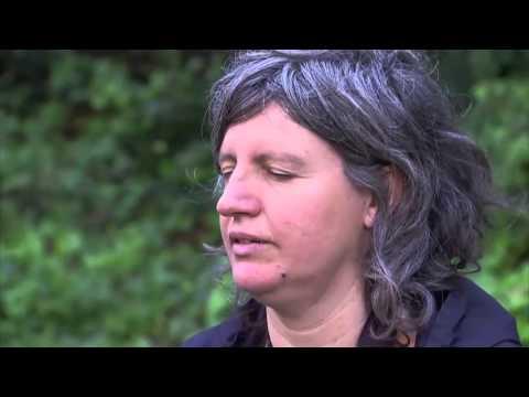 TV3 - Tocats de l'ala - Cants i reclams
