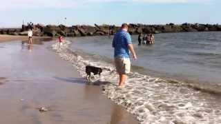 Kio at Coney Island (1st beach experience)