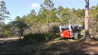 Keen Land Clearing palmettos 4x speed