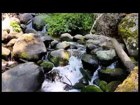 North Bailey Creek (Mineral Ca)