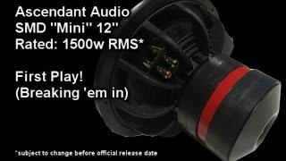Breaking In an SMD Mini 12