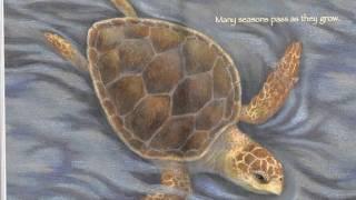 Sea Turtle Traits (Explain Everything)