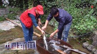 [中国新闻] 安徽歙县:村民用水难 高压水泵解困 | CCTV中文国际