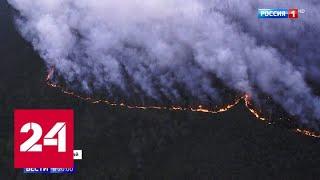 В одном месте огонь, в другом вода: горящая тайга повлияла на паводок - Россия 24