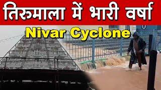 Nivar Cyclone Effect : तिरुमला में भारी बारिश से परेशान श्रद्धालु