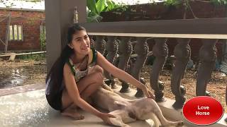 Lovely smart girl Playing Baby Cute Dogs On Rice Fields How to play with dog & Feed baby dogs P1