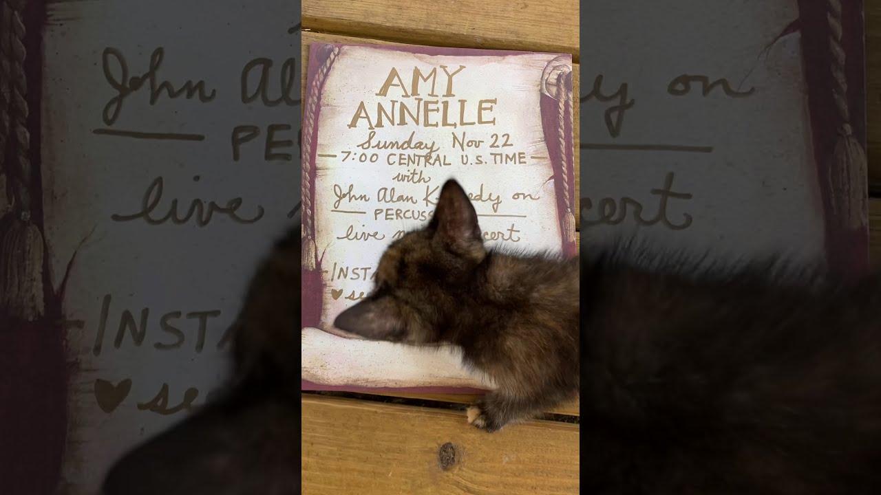 Amy Annelle Livestream Concert Sunday 11/22/20