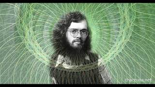 Terence Mckenna - Art Bell Lecture 1998